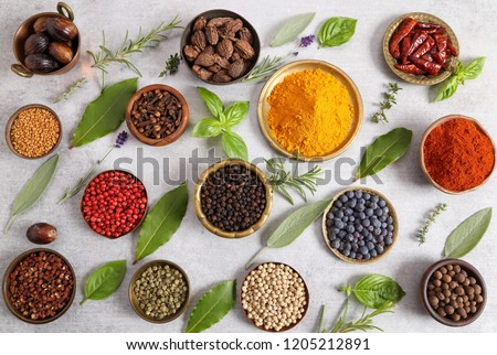 Colorful and aromatic herbs and spices on a gray ceramic background. Top view. #1205212891