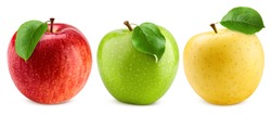 colorful apples, red green and yellow fruit, isolated on white background, clipping path, full depth of field
