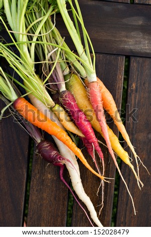 Colorful assortment of fresh organic carrots just picked from the garden shot on a wood table.