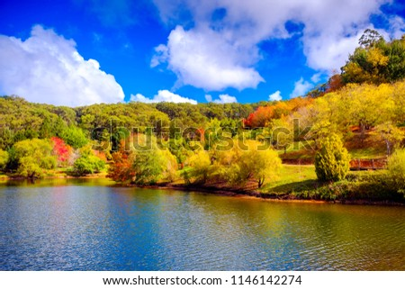 Colorful Australian autumn in Mount Lofty, Adelaide Hills, South Australia #1146142274