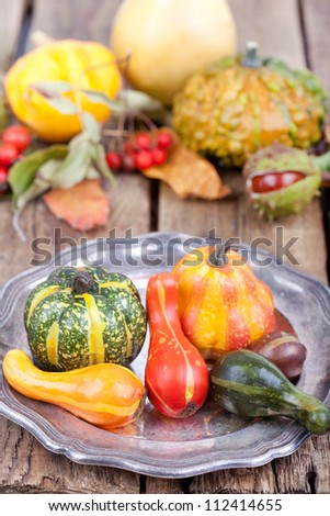 colorful autumn decoration on wooden table, autumn stuff on wooden board (pumpkins, chestnuts, nuts, leaves and rose hips), a plate with colorful pumpkins