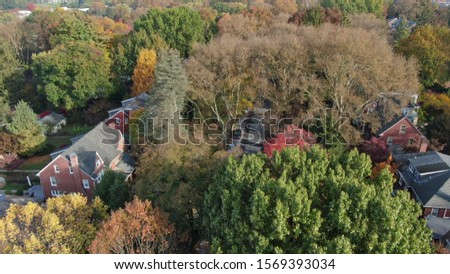 Colorful autumn foliage in suburban area, vintage villas and mansions in residential district, houses hidden in trees, luxury real estate with fancy backyards #1569393034