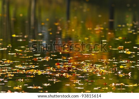 Colorful autumn foliage reflection in lake