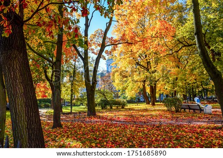 Colorful autumn in city park. Golden autumn in Saint-Petersburg, Russia. Autumn russian city park. Autumn in city