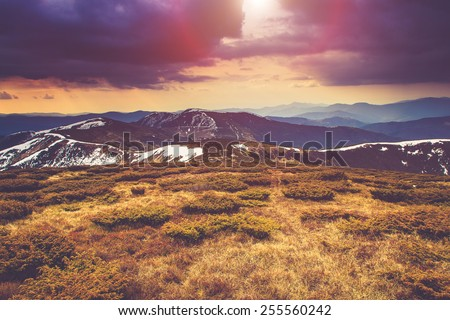 Colorful autumn landscape in the mountains. Dramatic overcast sky. Filtered image:cross processed vintage effect.