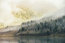 Colorful autumn landscape with mountain lake and coniferous trees with hoarfrost on hill with view to forest mountain in golden sunshine in low clouds. Sunlit yellow and frosty white larches in fog.
