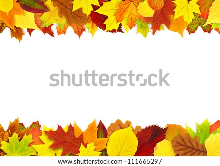 Colorful autumn leaves border isolated on white