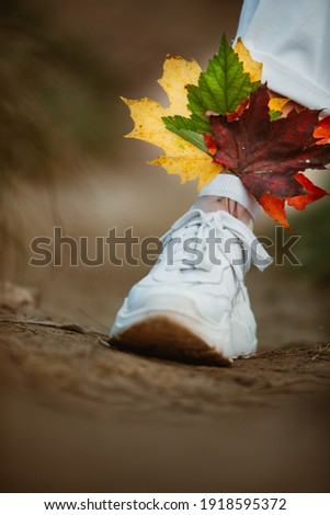 colorful autumn maple leaves in with woman socks in white sneakers close up