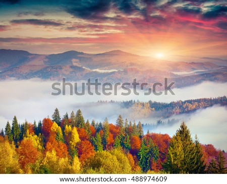 Colorful autumn scene in Carpathian mountains. Dramatic sunrise on Sokilsky ridge, Ukraine, Europe. Artistic style post processed photo.