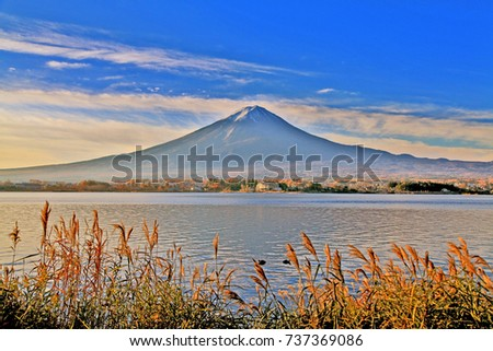 Colorful Autumn Season and Mountain Fuji with morning fog and red leaves at lake Kawaguchiko, Japan.