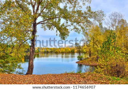 Colorful autumn sunny landscape on the lakeside with reflection of blue sky, clouds and trees on the water with ripple and golden leaves covered #1174656907