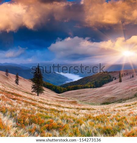 Colorful autumn sunrise in the Carpathian mountains. Ukraine; Europe. #154273136
