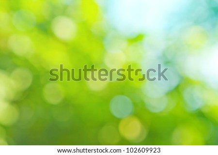 colorful background in green colors, the bokeh effect - Shutterstock ID 102609923