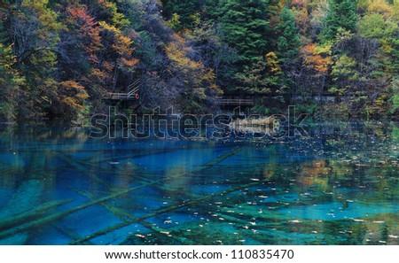 Colorful beautiful lake in autumn