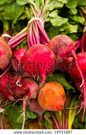 Colorful beet variety for sale at a local farmer's market