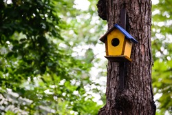 Colorful birdhouse on the tree.