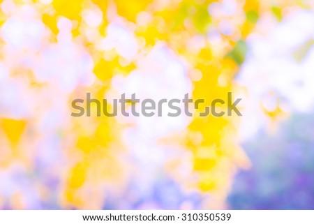 Colorful blur garden background #310350539