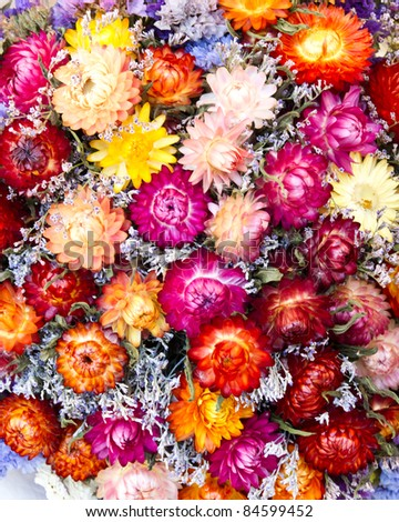 Colorful bouquet of dried flowers