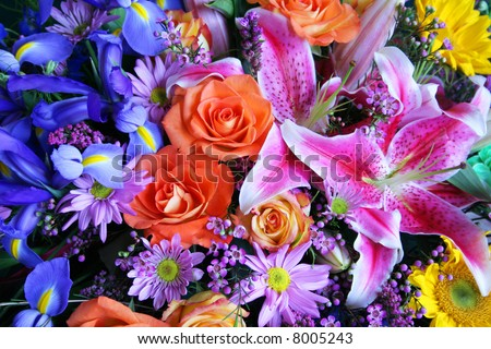 Colorful bouquet of exotic flowers