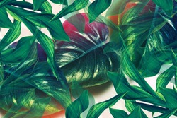 Colorful bright flower monstera. Natural floral background. Flower stalk and leaves.