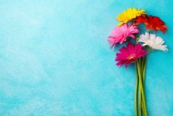 Colorful bunch of gerbera flowers on blue stone background. Top view. Copy space