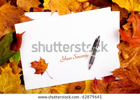 Colorful business frame of fallen autumn leafs