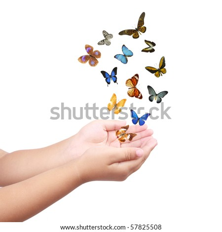colorful butterflies and small hands,flying dream