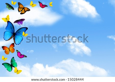 Colorful butterflies on blue cloudy sky