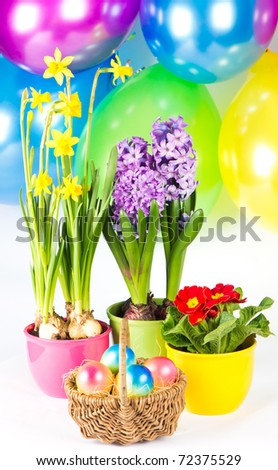 Colorful composition. Easter eggs with fresh spring flowers