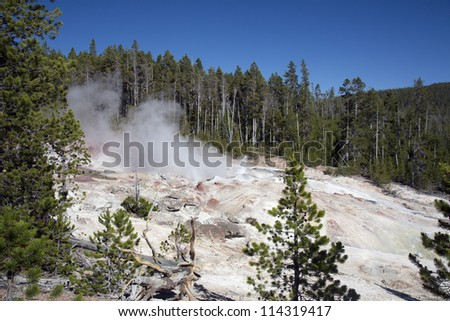 Colorful composition of geyser in hot springs in Yellowstone National Park, Montana, Wyoming, USA