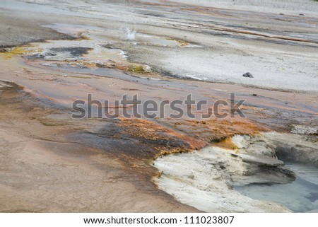 Colorful composition of hot springs in Yellowstone National Park, Montana, Wyoming, USA