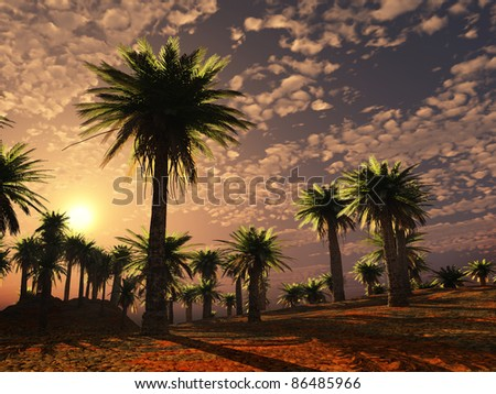 colorful desert landscape
