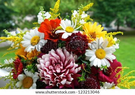 Colorful different and various flowers with green background, close up, Mothers day, bouquet of wild flowers