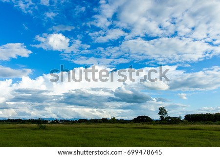 colorful dramatic sky with cloud at sunset #699478645