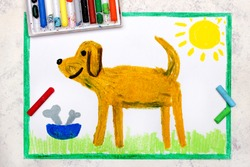 Colorful drawing: cut brown dog and bowl with bones
