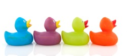 colorful ducks in a row