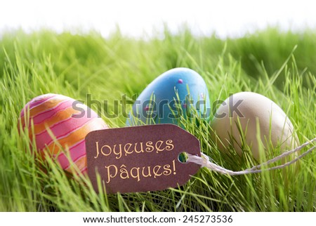 Colorful Easter Background With Three Easter Eggs And Label With French Text Joyeuses Paques On Green Grass For Happy Easter Seasons Greetings