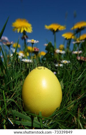 colorful Easter egg in the fresh  spring meadow - stock photo