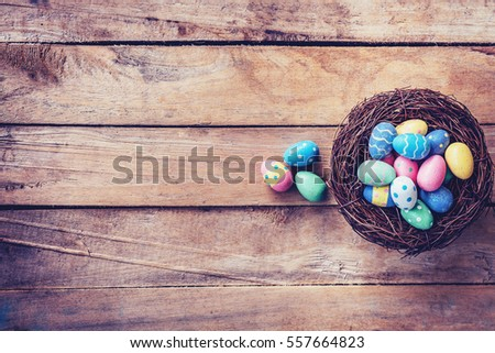 Colorful easter egg in the nest on wood background with space.