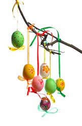 colorful easter eggs hanging on  branch. isolated  on white background
