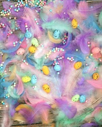 Colorful Easter Eggs with Pastel colored feathers background, greeting card, Easter Holliday, spring, Background concept, copy space