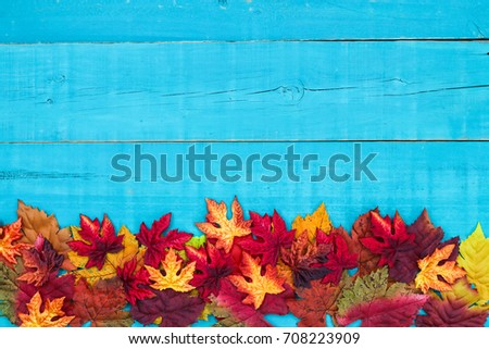 Colorful fall leaves border with blank antique rustic teal blue wood background; autumn, Thanksgiving, Halloween, seasonal nature sign with painted wooden copy space #708223909