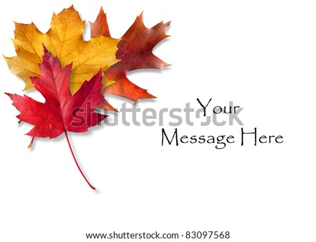 Colorful Fall leaves framing a message area