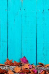 Colorful fall leaves on log with blank rustic teal blue wood background