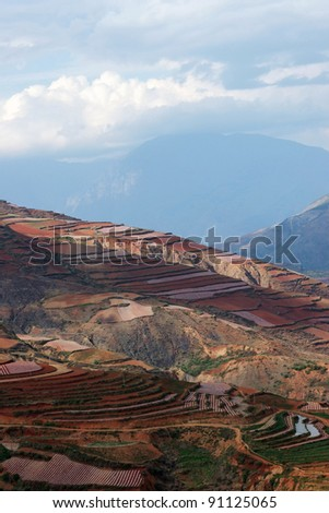 Colorful farmland