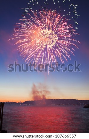 colorful firework and salute of various colors in the night sky