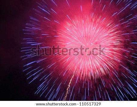 colorful firework on night sky