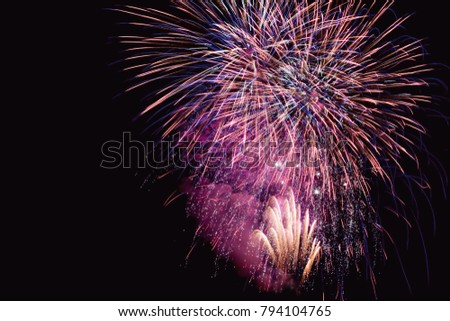Colorful firework on the night sky. New Year celebration fireworks. Abstract firework isolated on black background with free space for text #794104765