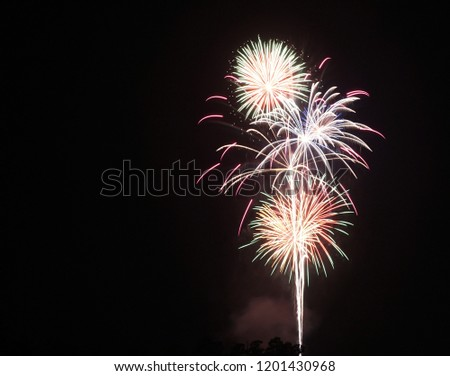 Colorful firework with black background #1201430968