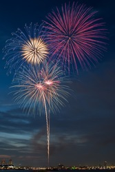 Colorful fireworks burst with trailing tail